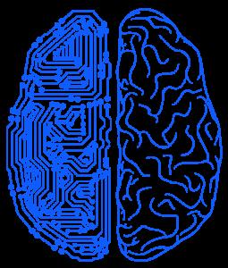 MKS-Brain
